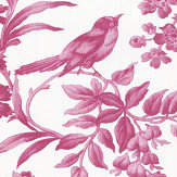Oasis Amelia Raspberry Wallpaper - Product code: W0106/03