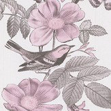 Oasis Ava Dusky Pink Wallpaper - Product code: W0107/01