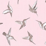 Oasis Hummingbird Blush Wallpaper - Product code: W0109/01