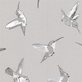 Oasis Hummingbird Grey Wallpaper - Product code: W0109/03