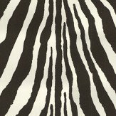 Ralph Lauren Bartlett Zebra Charcoal Wallpaper - Product code: PRL5017/04