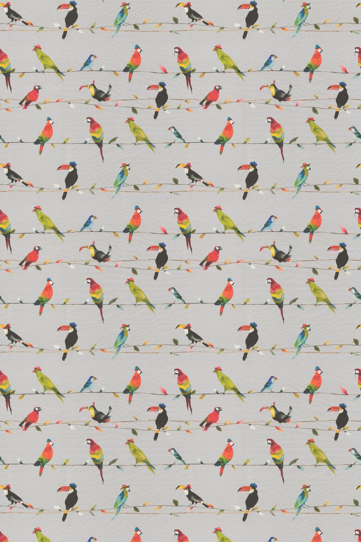 Toucan Fabric - Tropical - by Prestigious