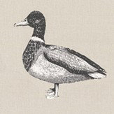 Prestigious Duck Canvas Fabric