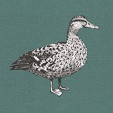 Prestigious Duck Teal Fabric