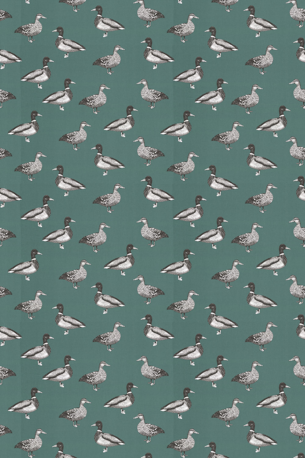 Prestigious Duck Teal Fabric - Product code: 5040/117