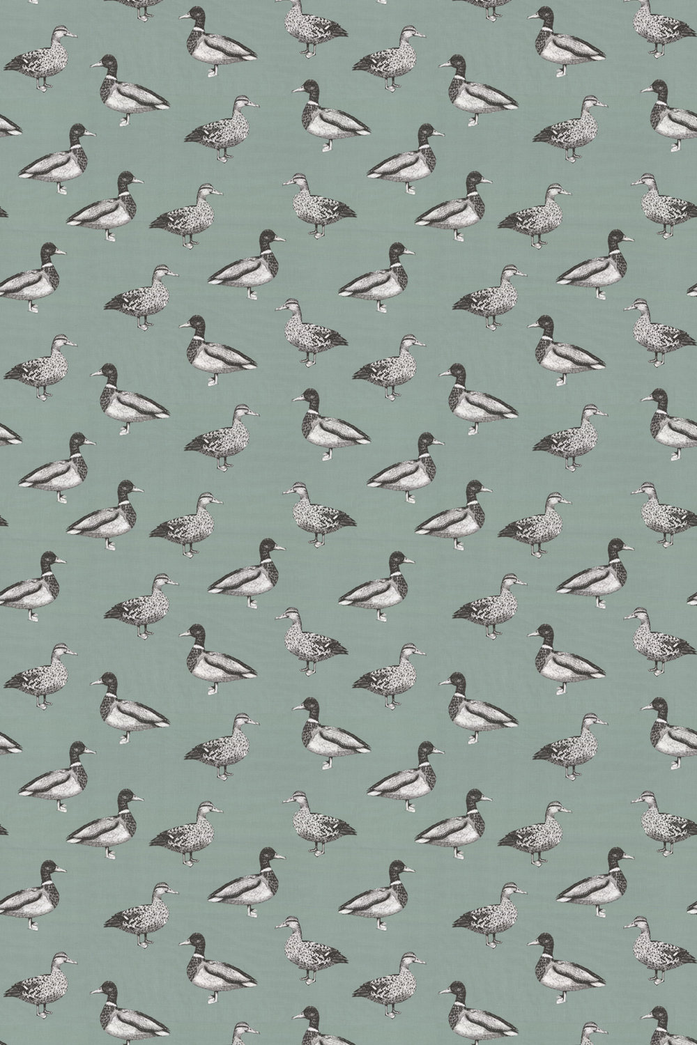 Duck Fabric - Eggshell - by Prestigious