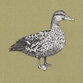 Prestigious Duck Willow Fabric