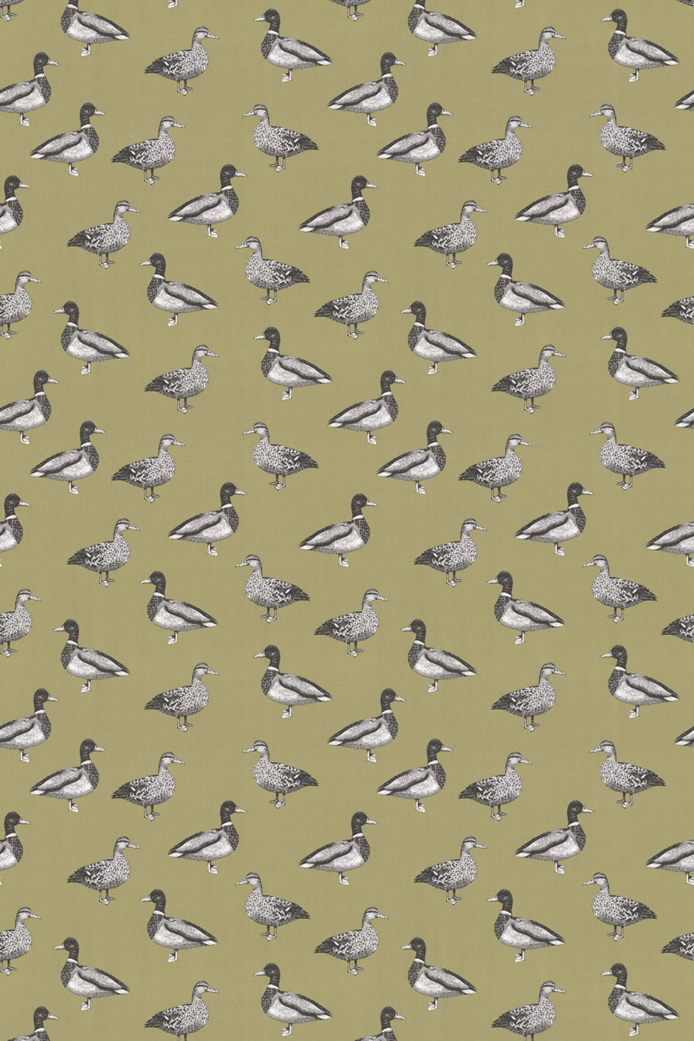 Duck Fabric - Willow - by Prestigious