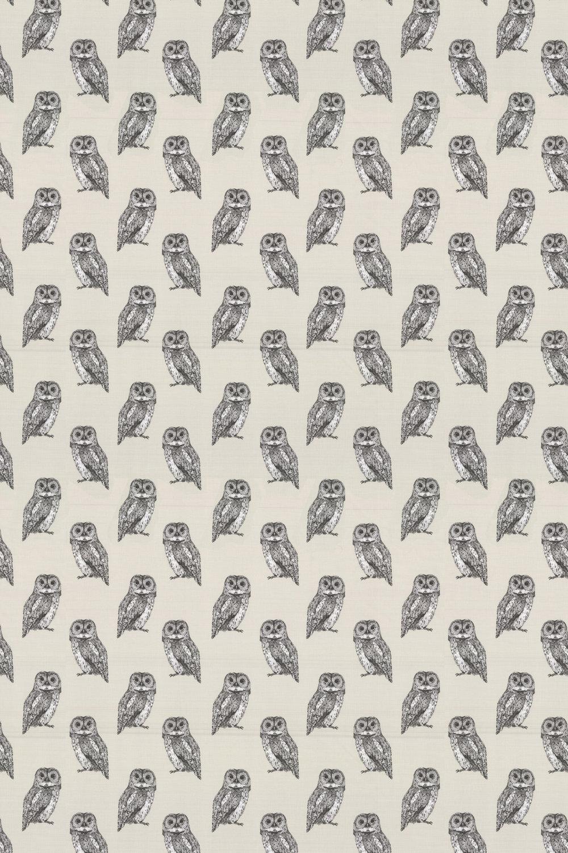 Prestigious Owlet Canvas Fabric - Product code: 5047/142