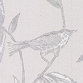 Brian Yates Toile Bird Pink and Silver Wallpaper