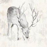 Albany Highland Stag Grey Wallpaper