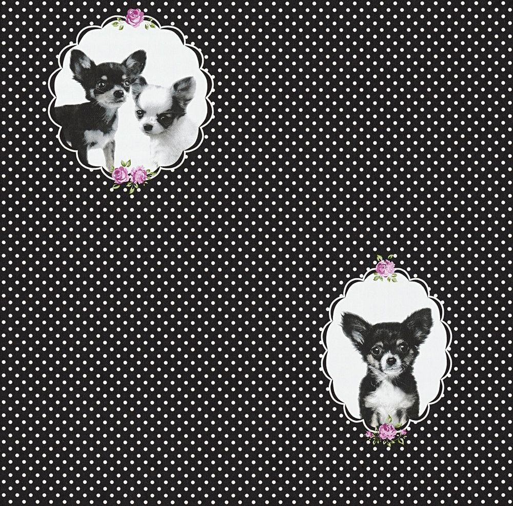 Albany Little Stars Black Wallpaper - Product code: 35851-2