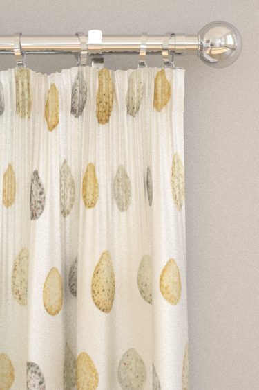 Sanderson Nest Egg Corn and Graphite Curtains - Product code: 226424