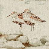 Sanderson Estuary Birds Eggshell and Nest Fabric