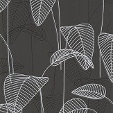 Galerie Leaf Outline Black and White Wallpaper - Product code: 219052