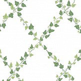 Sandberg Murgröna Green  Wallpaper - Product code: 707-48