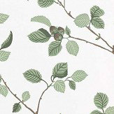 Sandberg Hassel Green / White Wallpaper - Product code: 709-38