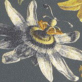 Brian Yates Passion Flower Charcoal Wallpaper