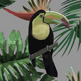 Graduate Collection Toucan & Beecatcher Mist Grey Wallpaper - Product code: ED1TOUWALMIS