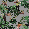 Graduate Collection Toucan & Beecatcher Mist Grey Wallpaper main image