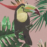 Graduate Collection Toucan & Beecatcher Pink Wallpaper - Product code: ED1TOUWALPIN