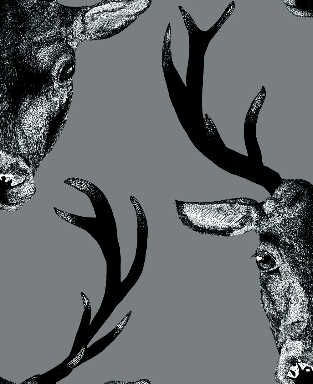 Graduate Collection Stag Head Grey Wallpaper main image
