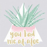 Holden Decor You Had Me at Aloe Multi Wallpaper - Product code: 12781