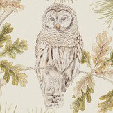 Sanderson Owlswick Briarwood Wallpaper - Product code: 216597