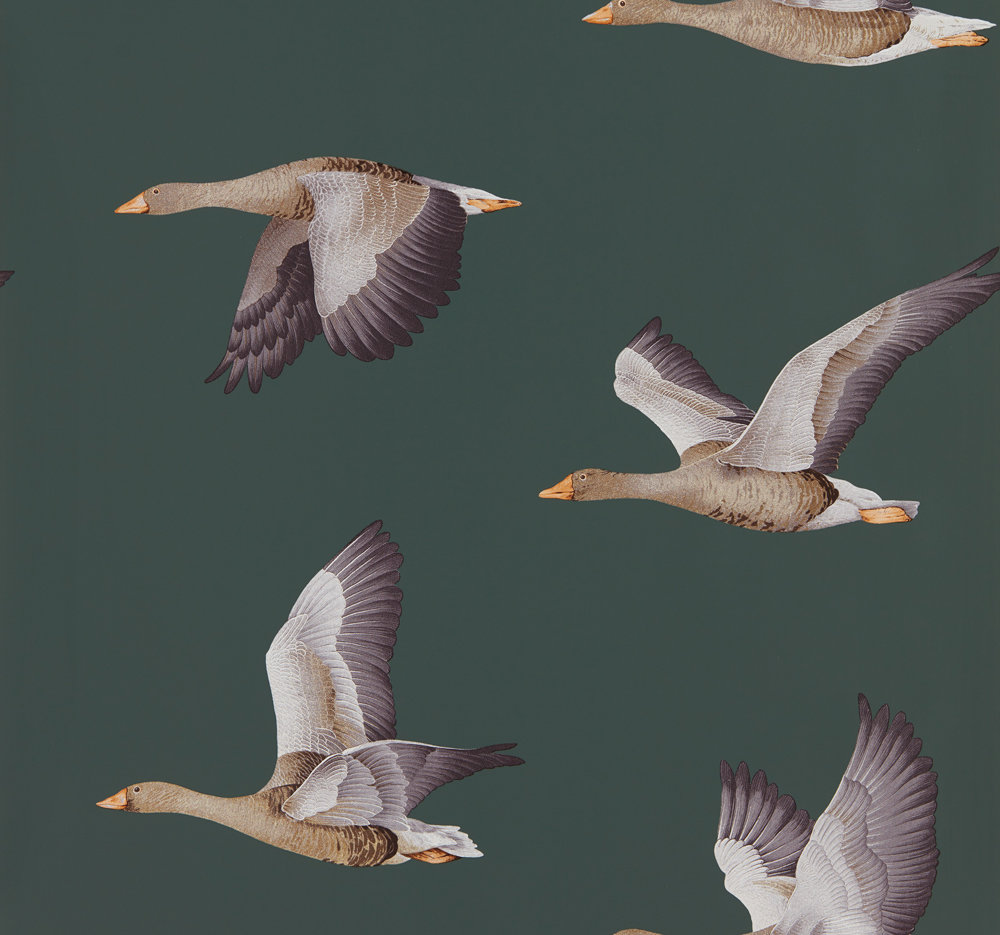 Sanderson Elysian Geese Amsterdam Green Wallpaper - Product code: 216608