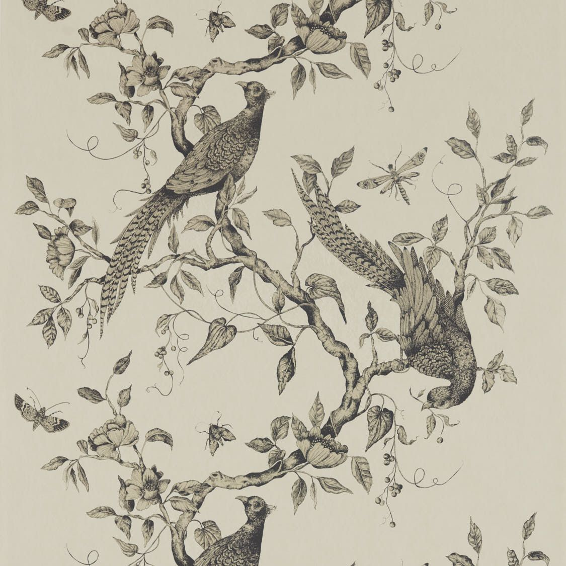 Zoffany Darnley Dove Mural - Product code: 312849