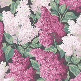 Cole & Son Lilac Magenta / Blush Wallpaper - Product code: 115/1001