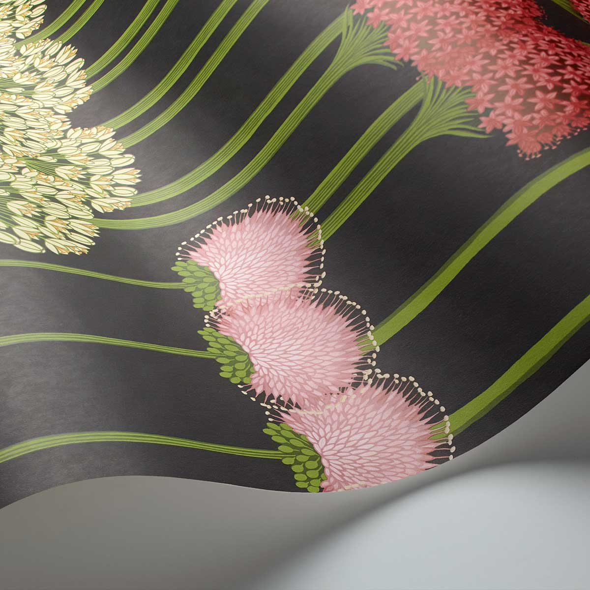 Allium Wallpaper - Coral / Leaf Green / Charcoal - by Cole & Son
