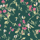 Cole & Son Sweet Pea Cerise / Magenta Wallpaper - Product code: 115/11033