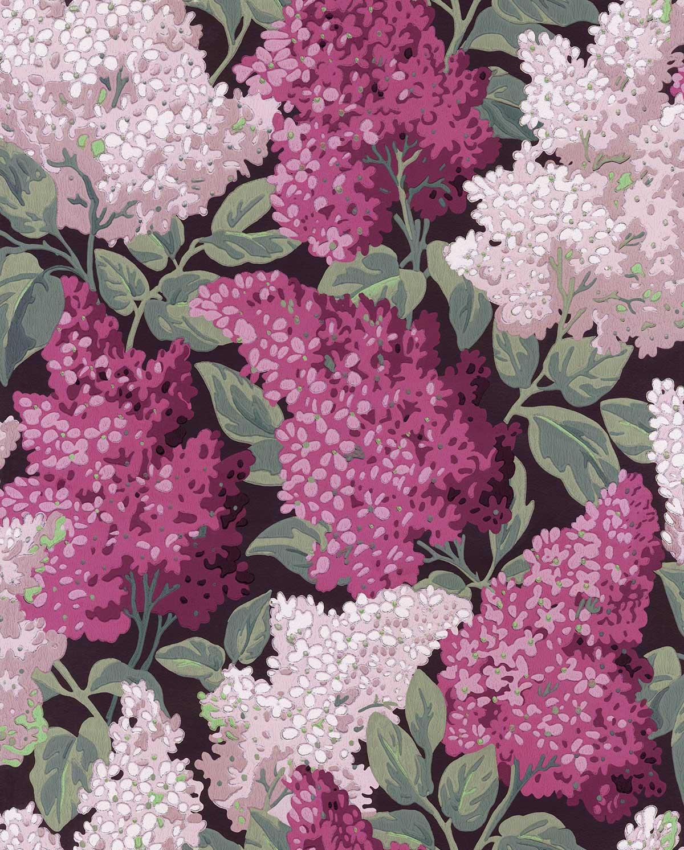 Lilac Grandiflora Wallpaper - Magenta / Blush - by Cole & Son