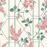 Cole & Son Wisteria Coral / Sage Wallpaper - Product code: 115/5012