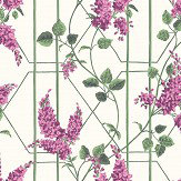 Cole & Son Wisteria Magenta / Leaf Green Wallpaper - Product code: 115/5013