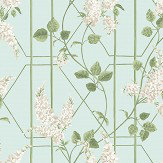 Cole & Son Wisteria Stone / Olive / Duck Egg Wallpaper - Product code: 115/5014
