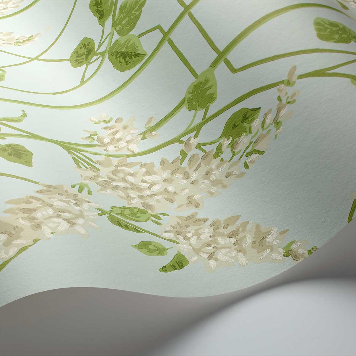 Cole & Son Wisteria Stone / Olive / Duck Egg Wallpaper - Product code: 115/5014