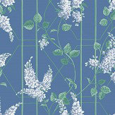 Cole & Son Wisteria Powder Blue / Jade Wallpaper - Product code: 115/5015