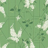 Cole & Son Wisteria Sage / Leaf Green Wallpaper - Product code: 115/5016