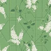 Cole & Son Wisteria Sage / Leaf Green Wallpaper