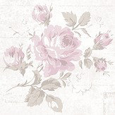 Galerie Rose and Text Dusky Pink Wallpaper - Product code: G45084
