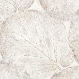 Arthouse Beech Leaf White Wallpaper