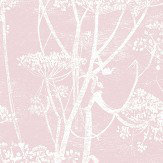 Cole & Son Cow Parsley Ballet Slipper Fabric - Product code: F111/5018