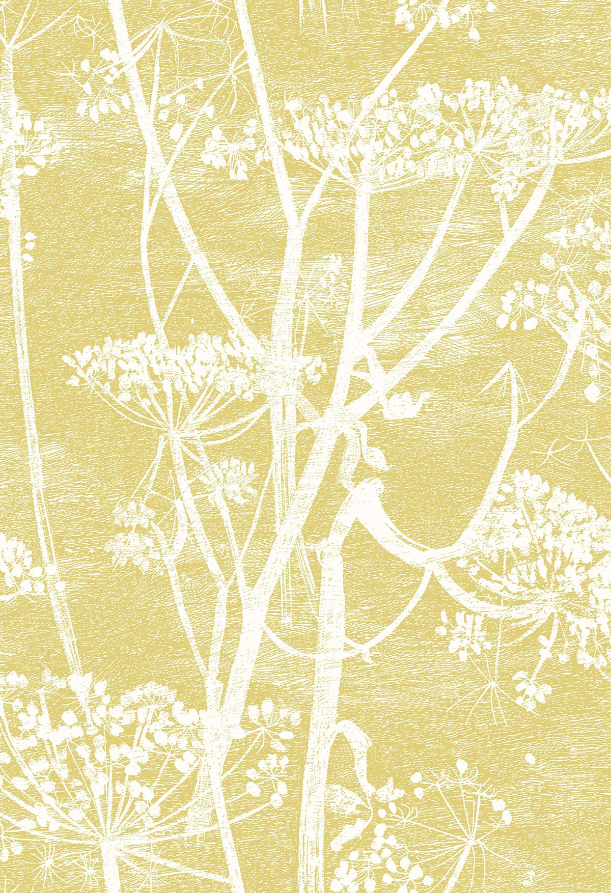 Cole & Son Cow Parsley Gold Fabric - Product code: F111/5020