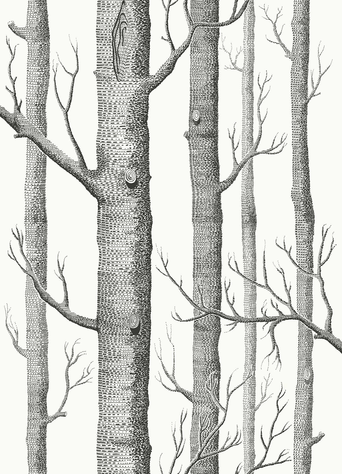 Cole & Son Woods Soot on Snow Fabric - Product code: F111/7026LU