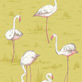 Cole & Son Flamingos Ochre Fabric