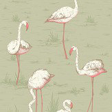 Cole & Son Flamingos Olive Fabric