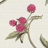Albany Berry Trail Pink Wallpaper