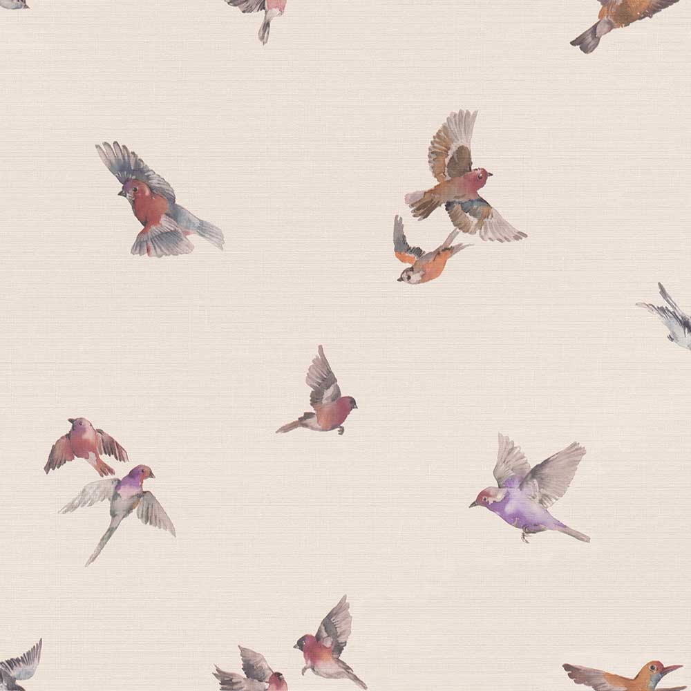 Albany Garden Birds Rose Pink Wallpaper - Product code: 401110